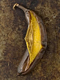 Rustic barbecued banana Royalty Free Stock Photography