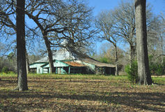Rustic Barn. Old deteriorating barn.  Blue sky in background trees and ground in foreground Stock Image