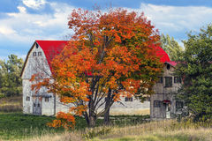 Rustic Barn. In the country with full autumn colour Stock Photography