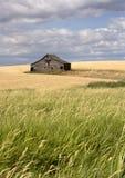 Rustic barn in the farmland. Stock Photo