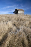 Rustic barn and flowing grass. royalty free stock image