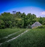 Rustic barn. In green field daytime Stock Photography