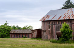 Rustic barn and out buildings Royalty Free Stock Images