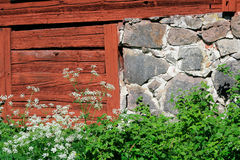 Rustic barn wall. A fragment of typical Swedish barn wall built of wooden beams painted dark red, and stones. Bright sunny day; the grass is green, and the wood Stock Images