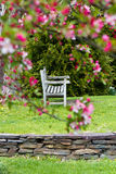 Rustic bench. Weathered old bench in romantic garden setting, fringed by cherry blossoms Royalty Free Stock Photo
