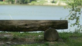 Rustic Bench near Lake stock footage