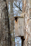 Rustic Bird Feeder Royalty Free Stock Image