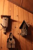 Rustic Bird Houses on Cabin Wall. Rustic hand-crafted bird houses decorating a cabin wall Stock Photography