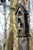 Rustic Birdhouse. An insulated birdhouse sitting high on a  tree stump in rural Tennessee Stock Photos