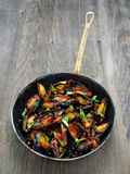 Rustic black mussel in tomato sauce Royalty Free Stock Photo