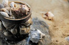 Rustic blown glass jar with sea shells stock image