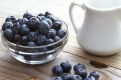 Rustic blueberries. Rustic table setting of blueberries and a small white milk pitcher Royalty Free Stock Photography