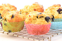 Rustic blueberry muffins. For a wholesome snack, horizontal composition Stock Images
