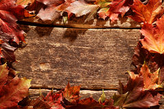 Rustic border of colorful autumn leaves Stock Photo