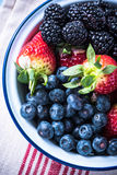 Rustic bowl full of forest summer berry fruits Stock Image
