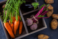 Rustic box with fresh carrots, beetroot, aubergine and potatoes Stock Images