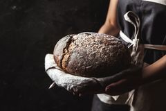 Rustic bread in baker hand, healthy food stock photography