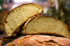 Rustic bread from Puglia stock image