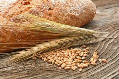 Rustic bread and wheat Royalty Free Stock Photography