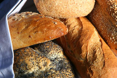 Rustic Breads. Basket of rustic breads, including seeded loaves, focaccia and french baguette Stock Photography