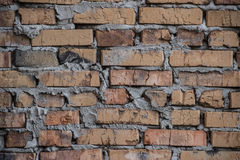 Rustic brick wall / background Stock Images