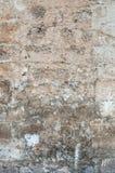 Rustic brick wall texture Stock Image