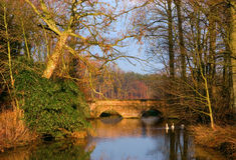 Rustic bridge with water. Old bridge in beautiful landscape when the feeble wintersun is shining Royalty Free Stock Image