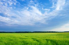 Rustic bright landscape royalty free stock image