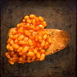 Rustic british food baked beans on toast Royalty Free Stock Image