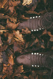 Rustic Brown Boots in Autumn Leaves Stock Images