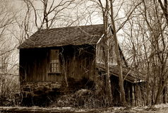 Rustic Cabin. Abandoned cabin forgotten by time and lost in a tangle of encroaching nature Stock Image
