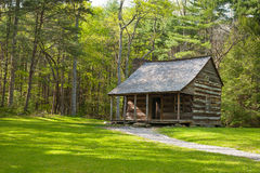 Rustic cabin in forest. Stock Image