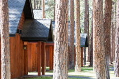 Rustic cabins outdoors in forest, Stock Image