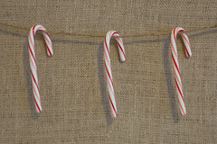 Rustic Candy Canes Royalty Free Stock Photography