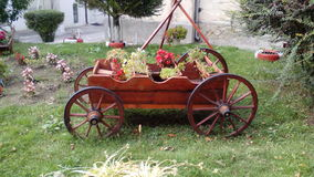 Rustic carriage for garden Stock Images
