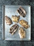 Rustic chicken bones leftovers soup ingredient Royalty Free Stock Image