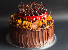 Rustic chocolate cake with fruit Royalty Free Stock Photos