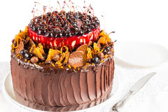 Rustic chocolate cake with fruit Stock Photo