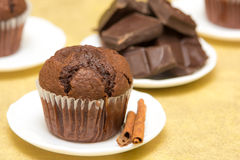 Rustic chocolate muffin. With cinnamon on little white plate Stock Image