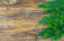 Rustic Christmas background with natural green fir tree branches border. Stock Photos