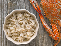 Rustic chunky cooked crab meat Royalty Free Stock Photography