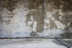 Rustic Concrete Background including the Floor/Gro. Background texture of brown concrete showing the ground Stock Photos