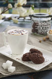Rustic cookies with cocoa and pistachios on white tray. Ceramic foam cup with cappuccino and cocoa powder, sugar cubes, cloth tablecloth and other kitchen Stock Photo