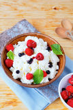 Rustic cottage cheese with berries Stock Images