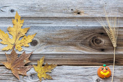 Rustic country image background of great card idea for fall time Royalty Free Stock Photo