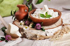 Rustic dairy products still life Royalty Free Stock Photography