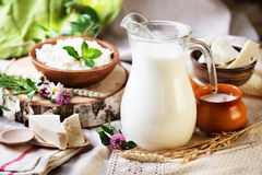 Rustic dairy products still life Stock Photography