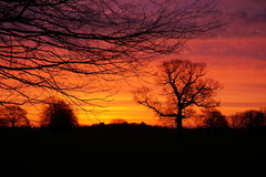 Rustic Dawn. Fantastic colours of a December morning at sun rise Stock Images