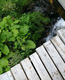 Rustic deck at the forest cottage royalty free stock images