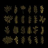 Rustic decorative plants collection. Hand drawn vector design elements. stock illustration